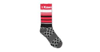 Kawasaki Star Socks