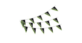 Kawasaki Two-Sided String Pennants